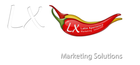 Search engine marketing South America